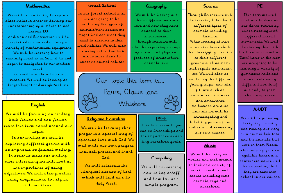 Class 1D – St Peter's Catholic First School (Academy)